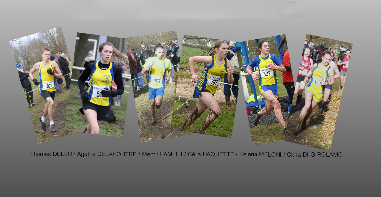 Particip_France_cross_2014.jpg